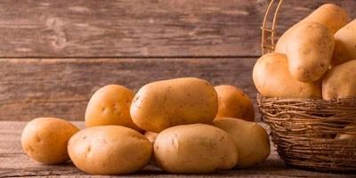siliplant-v-tekhnologii-vyrashchivaniya-kartofelya