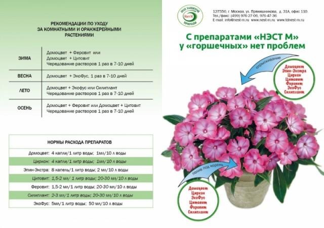 mozhno-li-sovmeshchat-preparaty-nest-m-v-odnom-rastvore_1