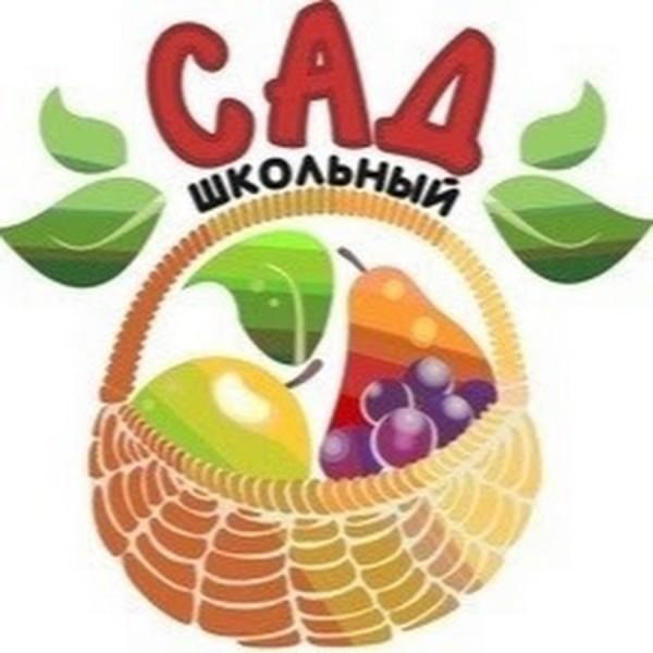 shiblev-vladimir-aleksandrovich-pitomnik-shkolnyj-sa_20180830-192911_1