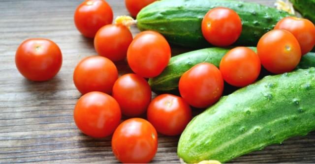 primenenie-regulyatorov-rosta-tsirkon-epin-ekstra-i-udobrenij-siliplant-ekofus-ferovit-tsitovit-v-tekhnologii-vyrashchivaniya-tomata-ogurtsa-zelennykh-kultur-v-zashchishchennom-grunte